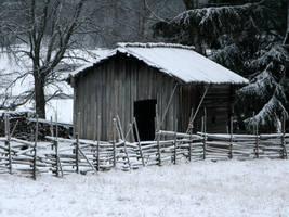 'Winter' by Suensyan