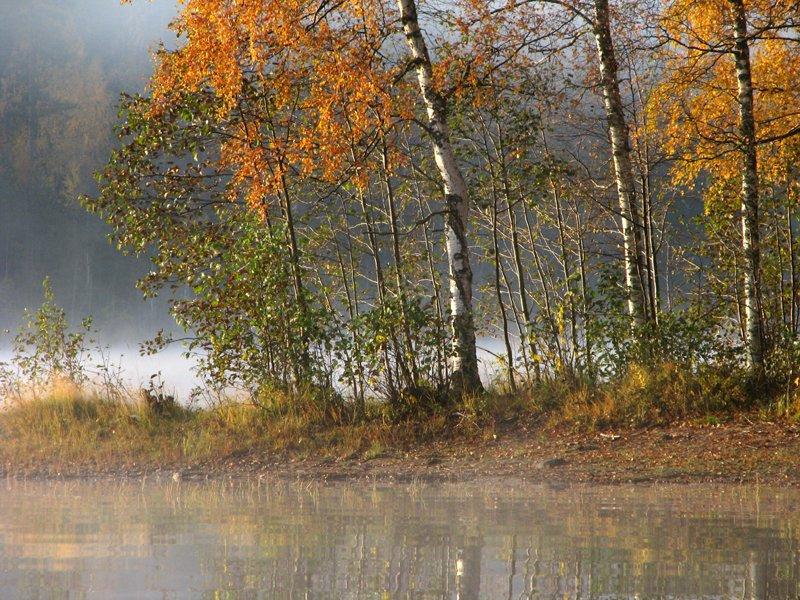 'October' by Suensyan