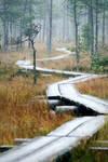 8.10.2013: This Path by Suensyan