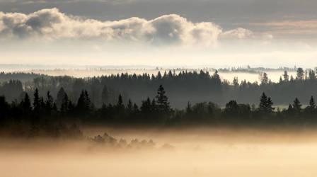 17.5.2016: May Morning Mists II by Suensyan