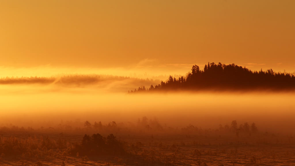 3.10.2016: Cold, Sweet October II by Suensyan