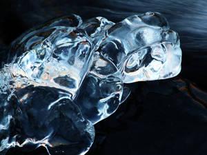 6.3.2017: Ice Turtle