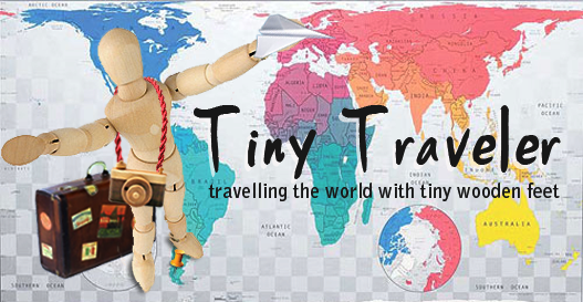 The Tiny Traveler by savvychic