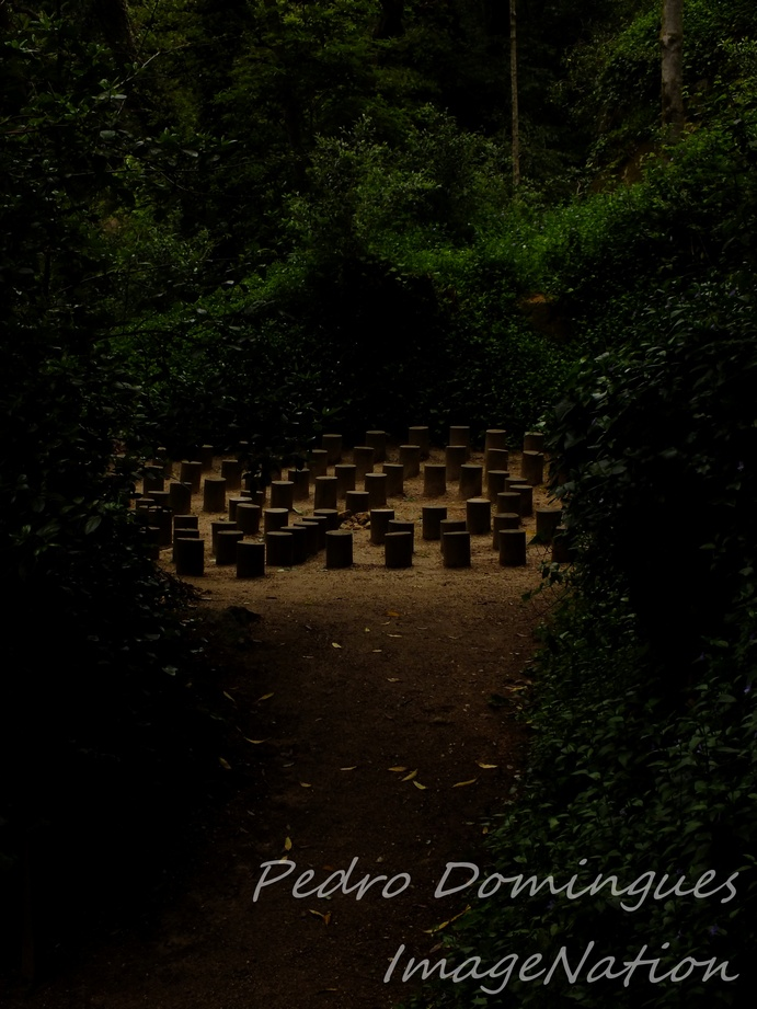 Secret Rituals by P3droD