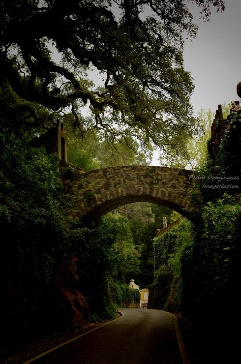 Magic gate by P3droD