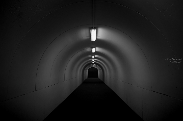 The path by P3droD