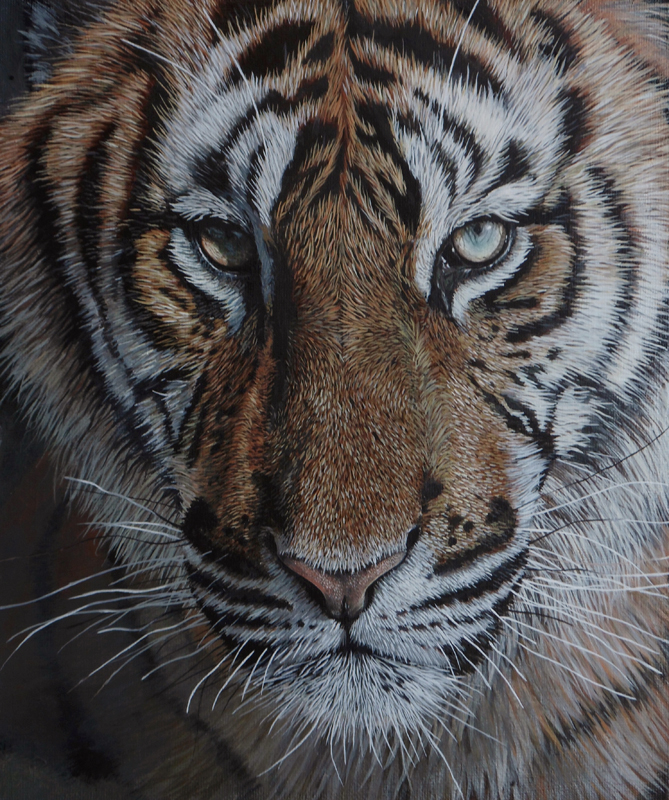 Tiger close up. by LukeT66