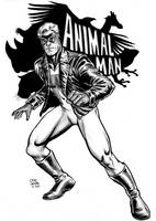 Animal Man by craigcermak
