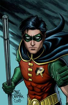 Robin, Tim Drake