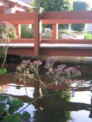 Little Blossom Bridge by moriookami