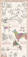 Canine tutorial / reference by SobaInu