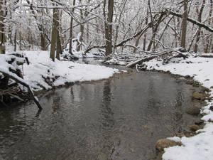 A Snowy Creek