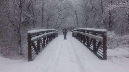 Snowy Bridge by bcm27
