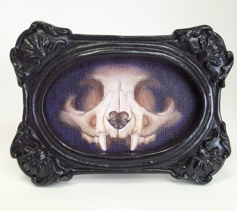 Cat Skull by darklyluminous