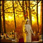 Faith's Golden Light