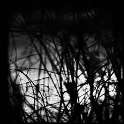 Dark Weather by redwolf518