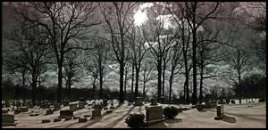 Shadows Cross the Dead