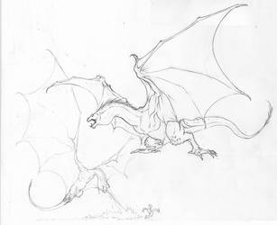 Dragon sketches by Inkthinker