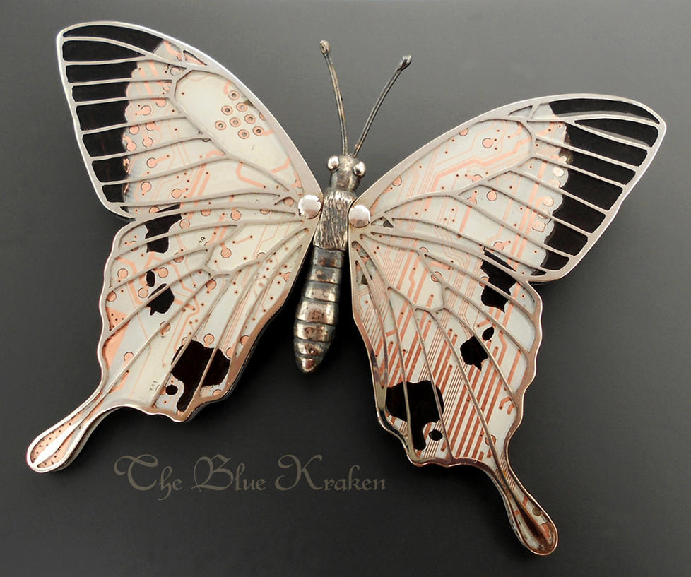 papilio dardanus meriones brooch by thebluekraken