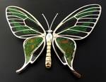 Birdwing Butterfly Ornithoptera paradisea Brooch by thebluekraken