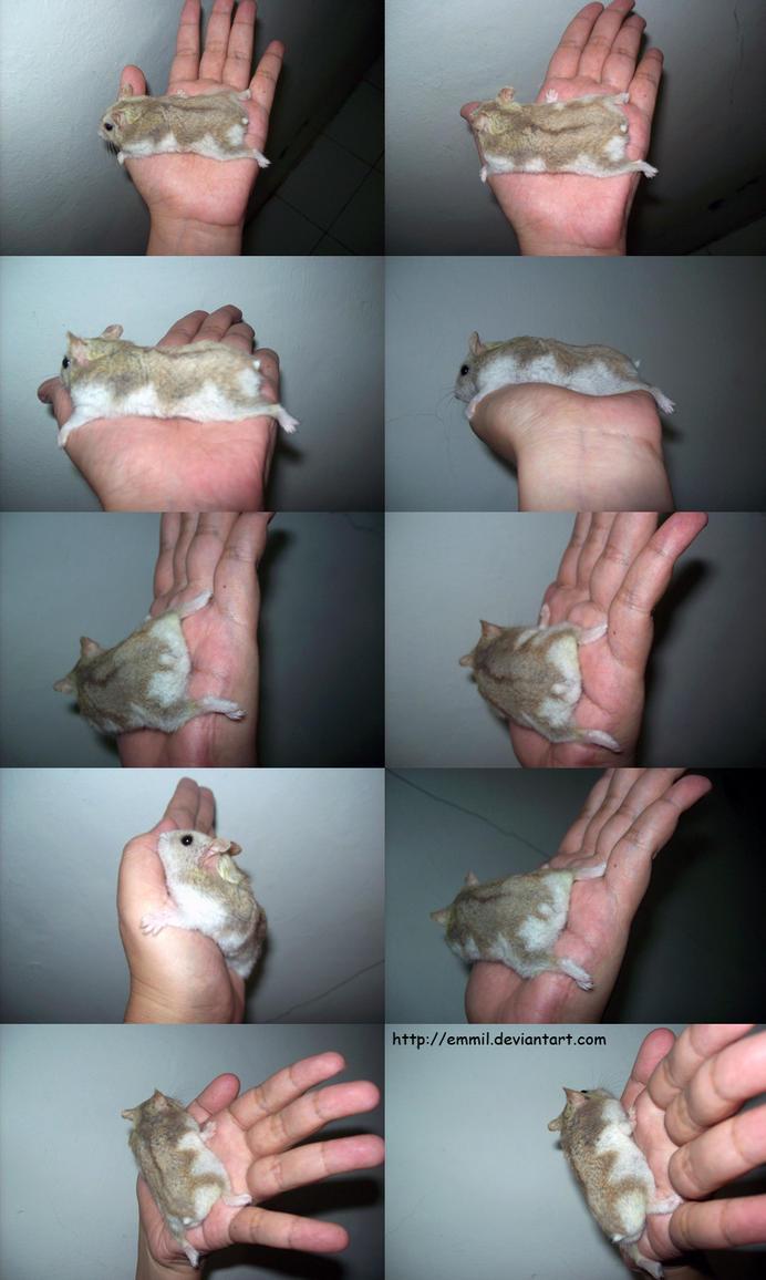 My Sticky Hand by emmil