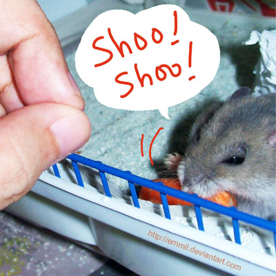 Shoo-shoo... by emmil