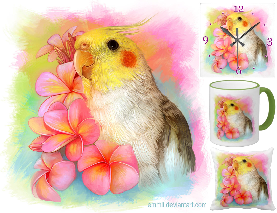 Cockatiel with frangipani by emmil