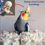 Zootopia bird meme