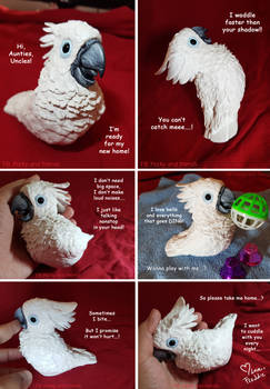 Hand sculpted umbrella cockatoo parrot sculpture