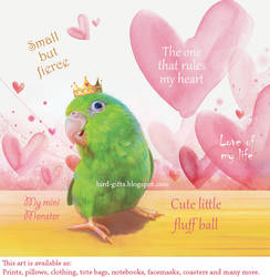 Parrotlet king small
