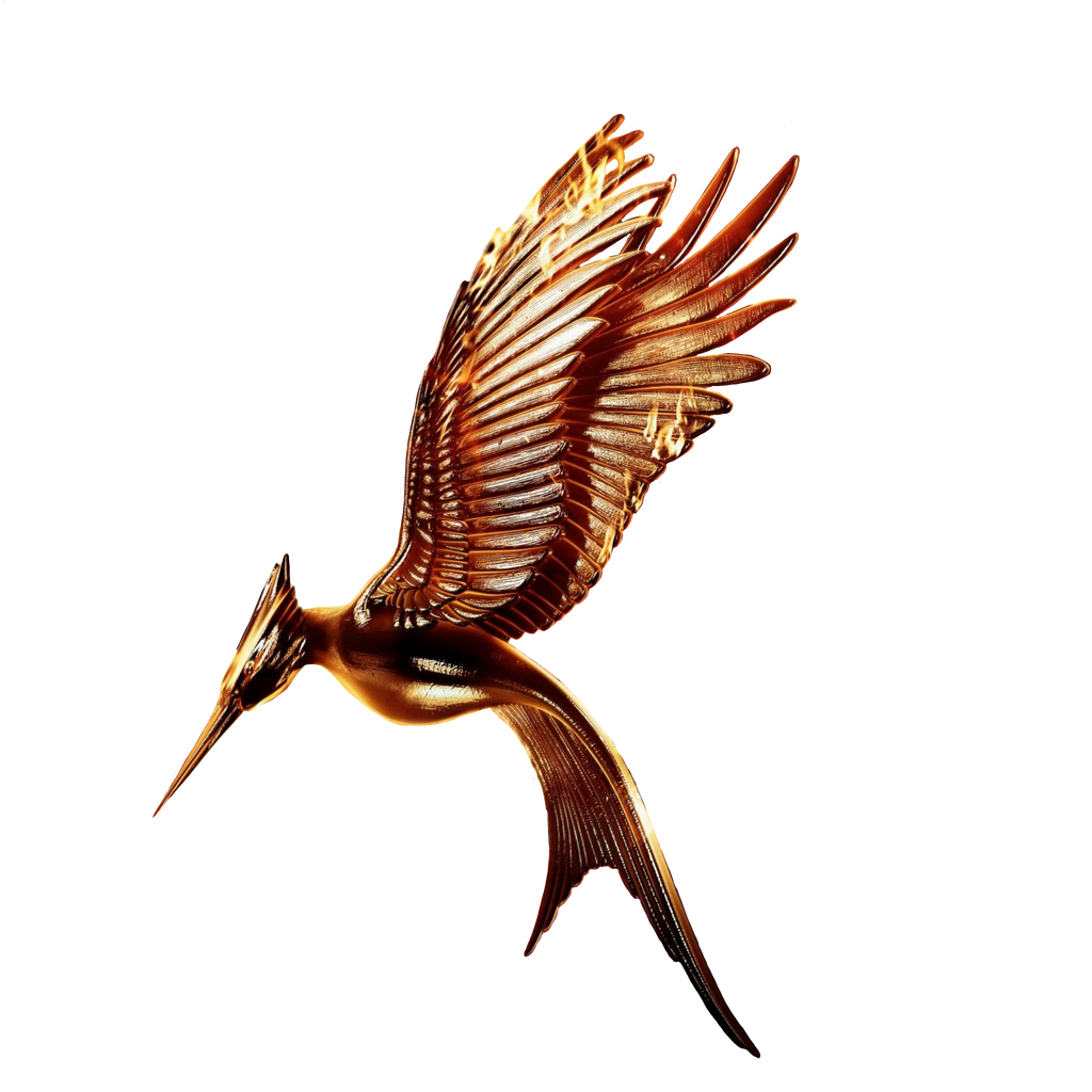 catching fire movie logo transparentwithout ring by