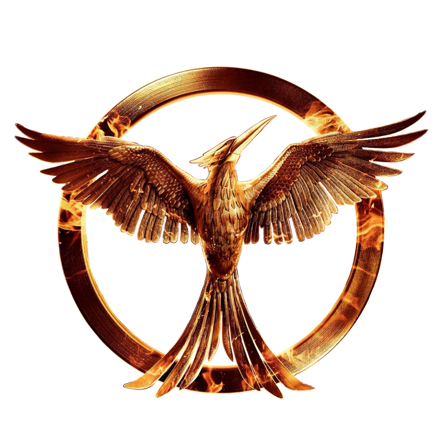 The Hunger games: Mockingjay part 1 png by allheartsgoboom ...