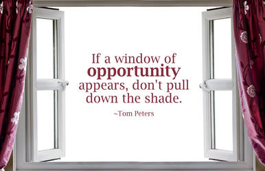 Quote - Window of Opportunity by rabidbribri