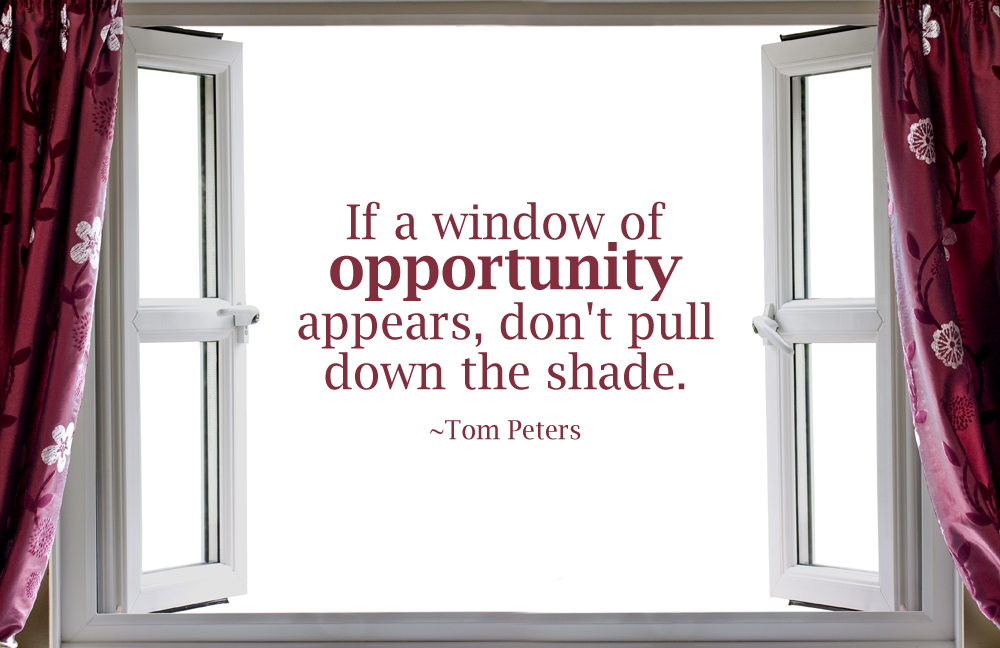 Quote window of opportunity by rabidbribri on deviantart for Window quoter