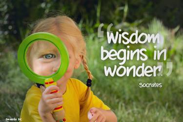 Quote - Wisdom Begins in Wonder by rabidbribri