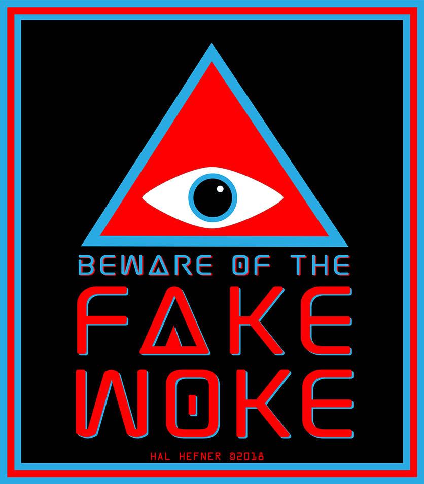 BEWARE THE FAKE WOKE by HalHefnerART
