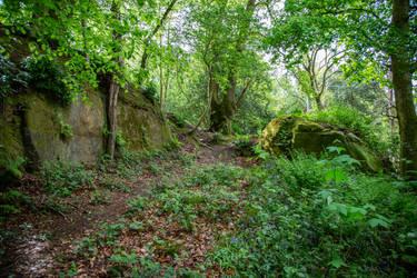 Stock...  Wakehurst 6 by RhysBriers