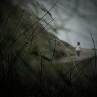 blowin' in the wind by AmeliePom