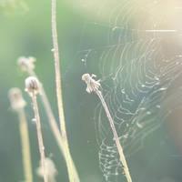 a breath away by AmeliePom