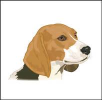 Beagle by elorhir