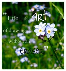 Life by Echo-desu