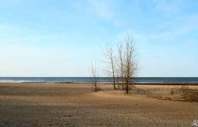 Lake Huron Beach by tashville