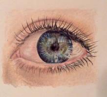 Eye by brailynne