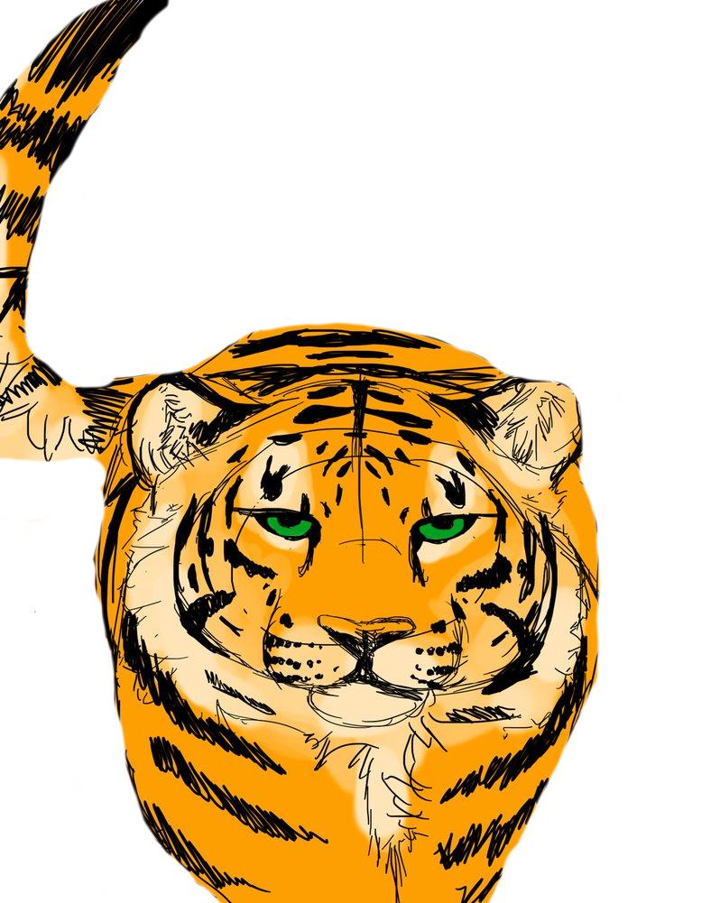 Tiger by XxZaneBBxX