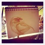 Raven Sketch - WIP