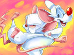 Pinky and the Brain2