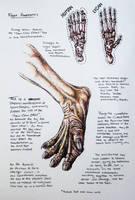 Lycanthropy: 'Dew-Claw Effect' by Psyartista9