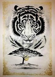 Tiger by Galinaxsim