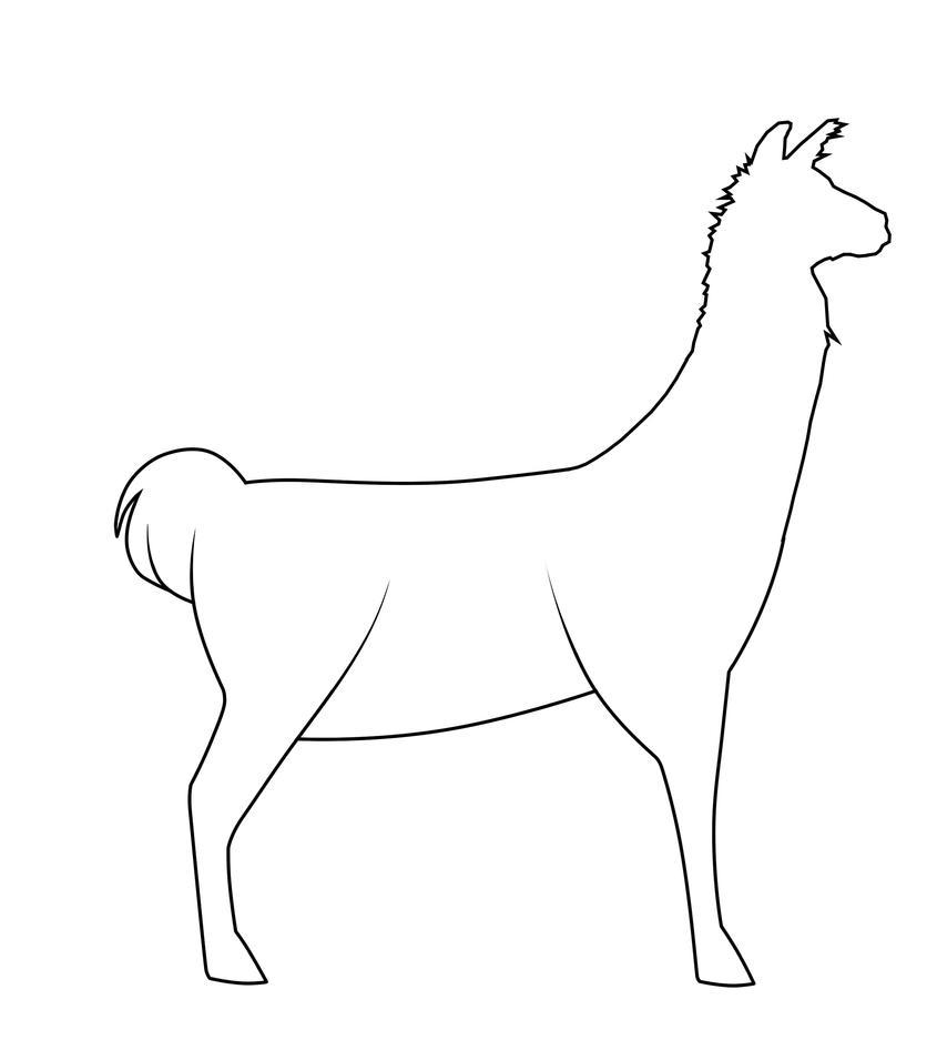 Line Drawing Llama : Llama lines by queadha on deviantart