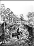 Lonely Creek